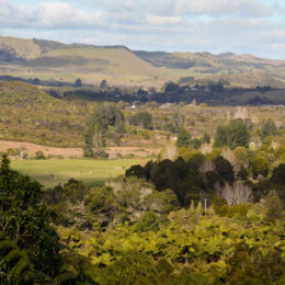 US expert to share benefits of wetland restoration