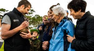 Kiwi Release – 17 November 2017