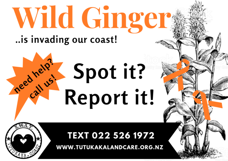 Wild Ginger Campaign Sign